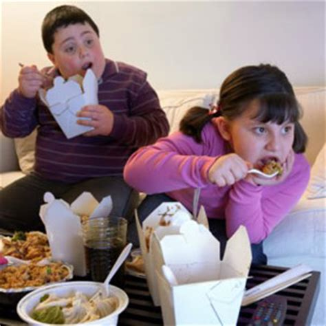 Obese kids arteries are middle aged   Parent24