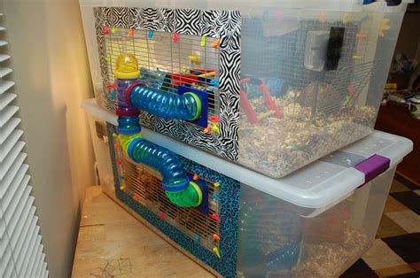 81 best images about Hamster cages! on Pinterest