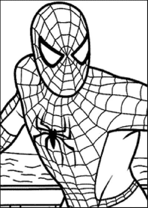my picture: spiderman coloring page