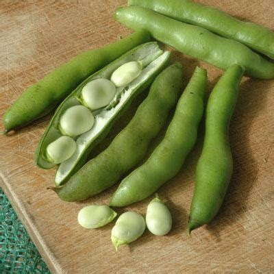 What is Edamame called in Hindi? - Quora
