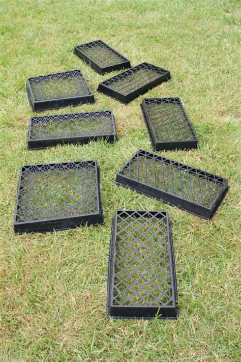 Uses for Plastic Plant Trays | ThriftyFun