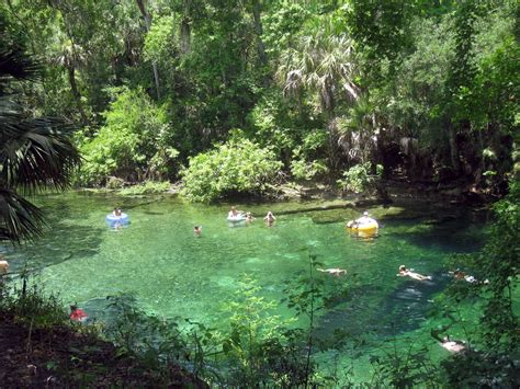Enjoy Some Of Florida's Most Beautiful Water At Blue Spring